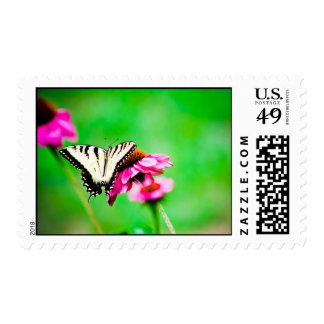 Eastern Tiger Swallowtail stamps