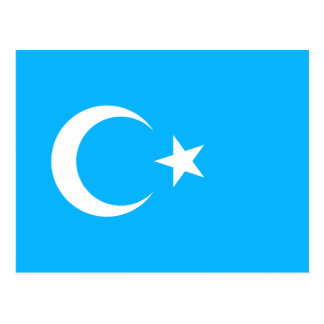 Eastern Turkistan, Democratic Republic of the Cong Postcard