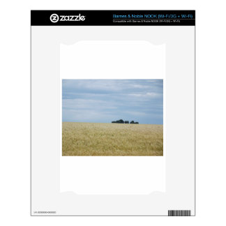 Eastern Washington Wheat Field Decal For NOOK