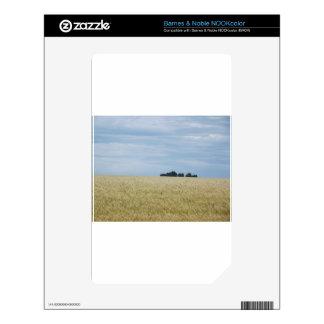 Eastern Washington Wheat Field NOOK Color Skin