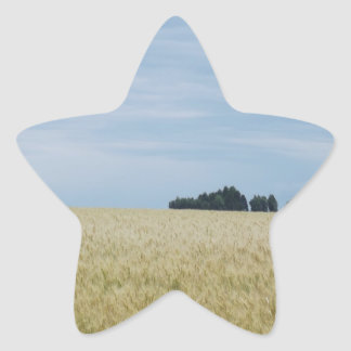 Eastern Washington Wheat Field Stickers