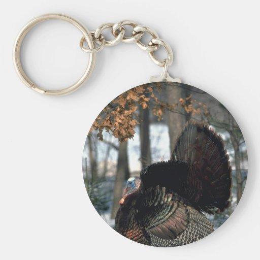 Eastern wild turkey, big gobbler strutting in snow keychain