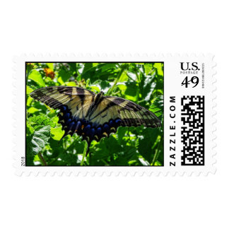 Eastern Yellow Swallowtail Butterfly Postage
