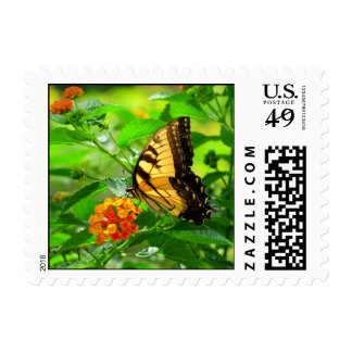 Eastern Yellow Swallowtail butterfly stamp