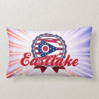 Eastlake, OH Pillows