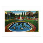 Eastman House Gardens Lily Pond Post Card