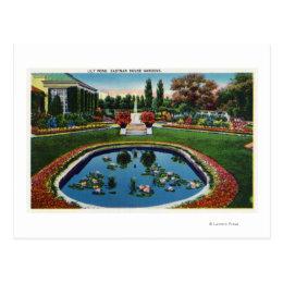 Eastman House Gardens Lily Pond Postcard