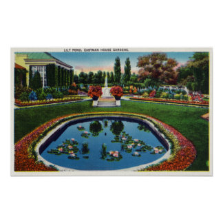 Eastman House Gardens Lily Pond Posters