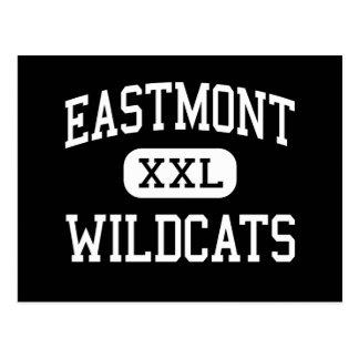 Eastmont - Wildcats - High - East Wenatchee Postcard