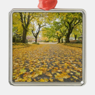 Eastmoreland In Autumn road and tree view Christmas Ornament