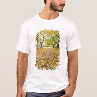 Eastmoreland In Autumn road and tree view T-Shirt