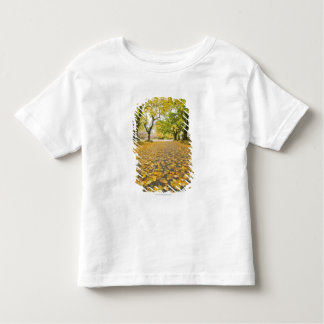 Eastmoreland In Autumn road and tree view Toddler T-shirt