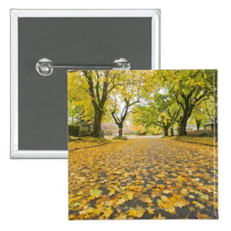Eastmoreland Neighborhood In Autumn 2 Inch Square Button