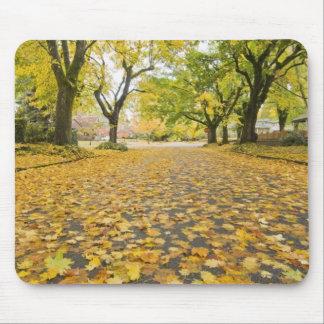 Eastmoreland Neighborhood In Autumn Mouse Pad