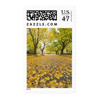 Eastmoreland Neighborhood In Autumn Postage