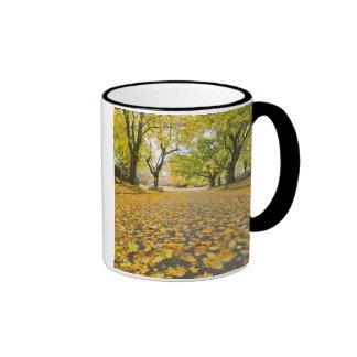 Eastmoreland Neighborhood In Autumn Ringer Mug