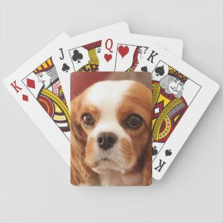 Easton, Pennsylvania, USA Card Decks