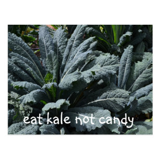Eat Kale Not Candy Postcard