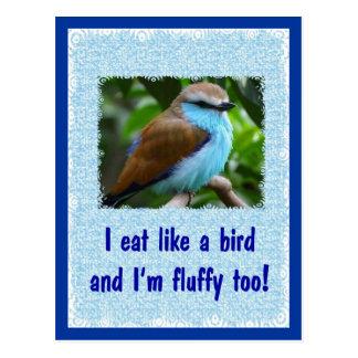 Eat Like a Bird 2 Postcard