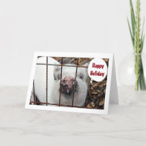 """EAT MORE CHICKEN AND HAPPY HOLIDAY"" SAY THE PIGGY HOLIDAY CARD"