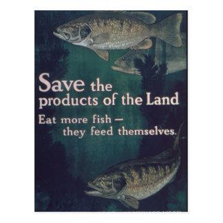 Eat More Fish - Vintage Postcard