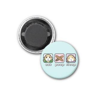 Eat Poop Sleep Guinea Pig Fridge Magnet