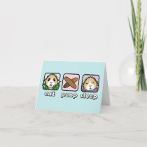 Eat Poop Sleep Guinea Pig Greetings Card