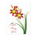 Eat Pray Love Post Card