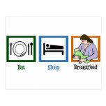 Eat Sleep Breastfeed Postcard