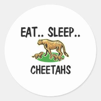 Eat Sleep CHEETAHS Stickers
