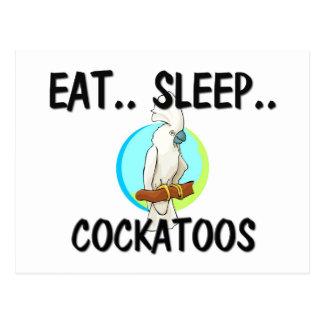 Eat Sleep COCKATOOS Post Cards