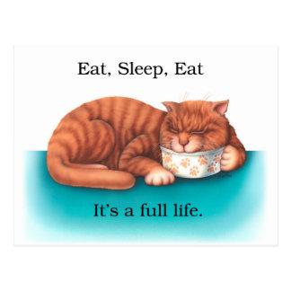 Eat Sleep Eat Postcard