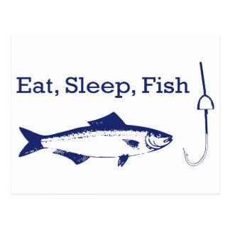Eat sleep fish postcards zazzle for How do fishes sleep