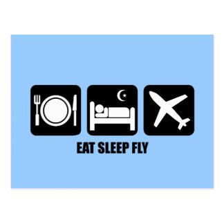 eat sleep fly postcard