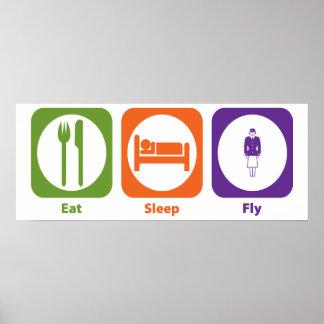 Eat Sleep Fly Poster