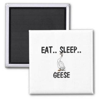 Eat Sleep GEESE Magnet