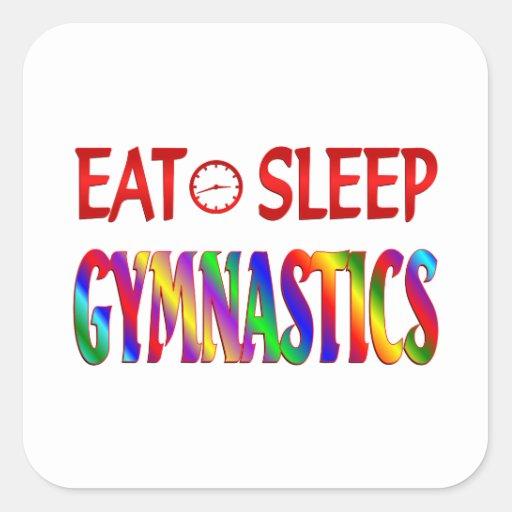 Eat Sleep Gymnastics Sticker