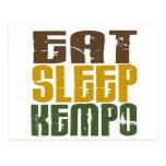 Eat Sleep Kempo 1 Postcard