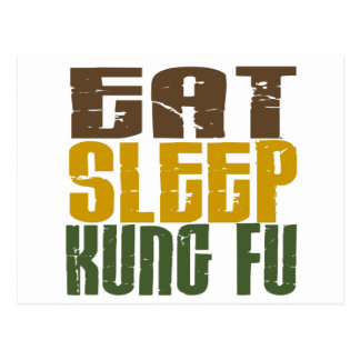 Eat Sleep Kung Fu 1 Postcard