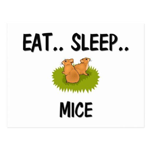 Eat Sleep MICE Postcard