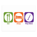 Eat Sleep Play Oboe Postcard