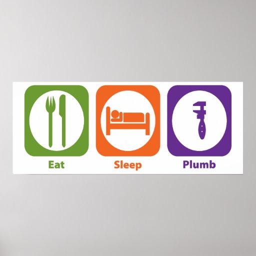 Eat Sleep Plumb Posters