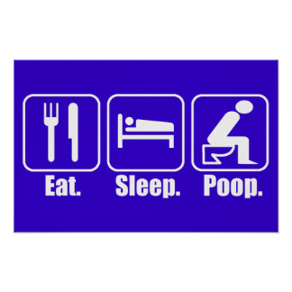 Eat Sleep Poop Poster