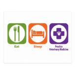 Eat Sleep Practice Veterinary Medicine Postcard