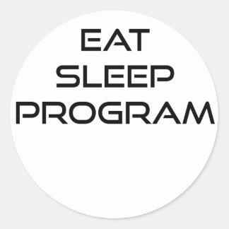 Eat Sleep Program Classic Round Sticker