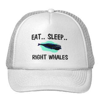 Eat Sleep RIGHT WHALES Trucker Hat