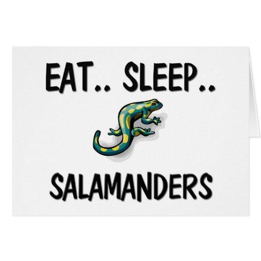 Eat Sleep SALAMANDERS Cards