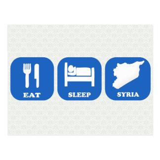 Eat Sleep Syria Post Card