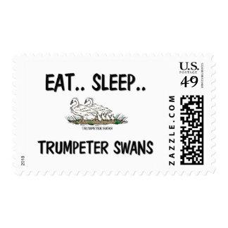 Eat Sleep TRUMPETER SWANS Postage Stamp