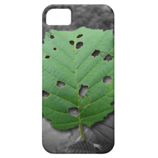 Eaten by Bugs; No Text iPhone SE/5/5s Case